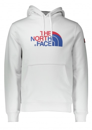 North Face IC Logo Hoodie - Vaporous Grey