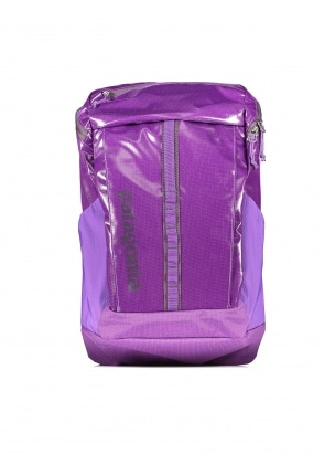 Patagonia Black Hole Pack 23L Purple One